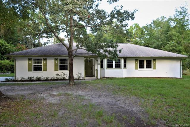 9305 SW 202 Ave Road, Dunnellon, FL 34433 (MLS #785181) :: Plantation Realty Inc.