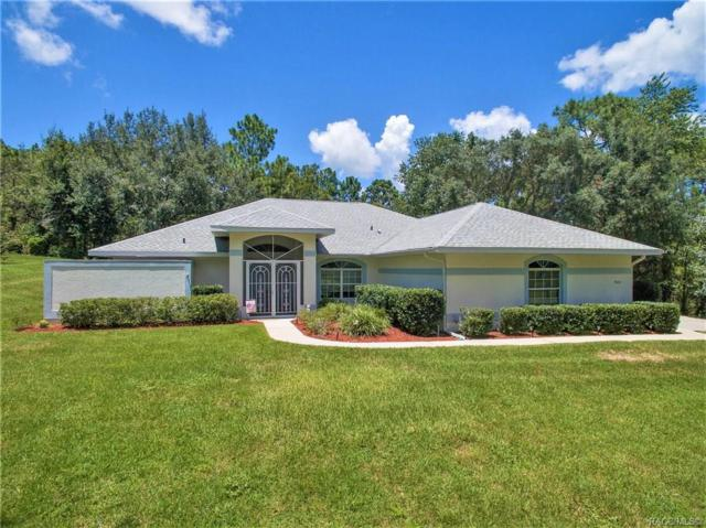 900 N Lafayette Way, Inverness, FL 34453 (MLS #785187) :: Plantation Realty Inc.