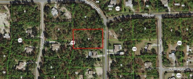 5574 W Fort Drum Drive, Beverly Hills, FL 34465 (MLS #785199) :: Plantation Realty Inc.