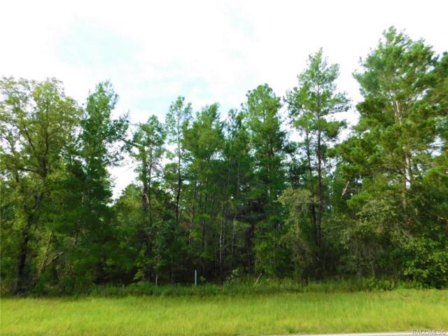 5830 W Oak Park Boulevard, Homosassa, FL 34446 (MLS #785216) :: Plantation Realty Inc.