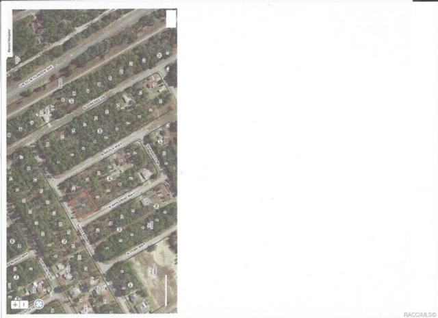 9565 N Applebud Way, Citrus Springs, FL 34434 (MLS #785235) :: Plantation Realty Inc.