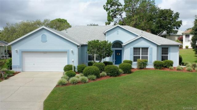 4729 N Jademoor Drive, Beverly Hills, FL 34465 (MLS #785274) :: Plantation Realty Inc.