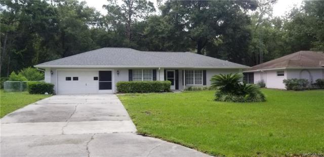 11075 N Fuego Drive, Citrus Springs, FL 34434 (MLS #785282) :: Plantation Realty Inc.