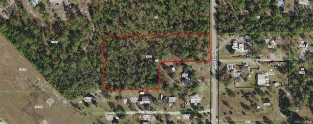 4798 N Ash White Terrace, Crystal River, FL 34428 (MLS #785283) :: Plantation Realty Inc.