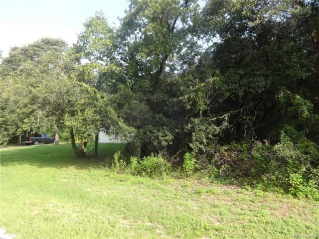 1479 W Country Club Boulevard, Citrus Springs, FL 34434 (MLS #785309) :: Plantation Realty Inc.
