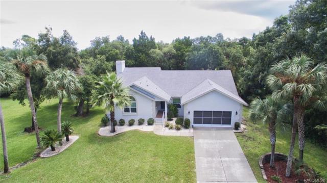 4535 Otter Point S, Homosassa, FL 34448 (MLS #785313) :: Pristine Properties