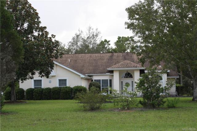 5328 N Perry Drive, Beverly Hills, FL 34465 (MLS #785315) :: Plantation Realty Inc.