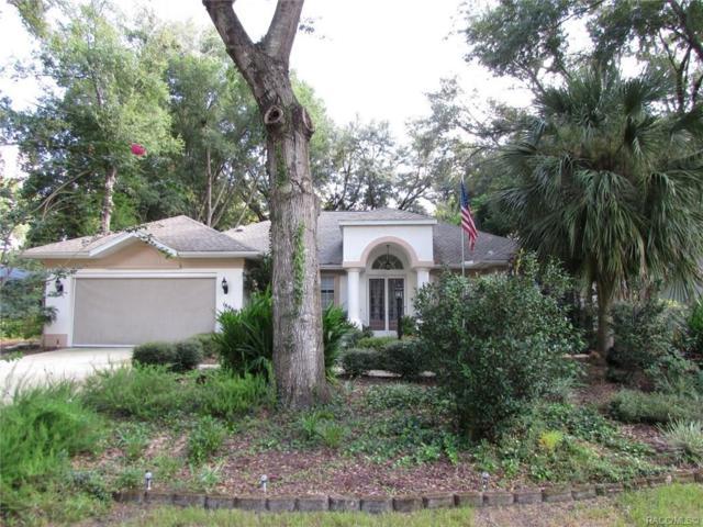 18969 SW 99th Street, Dunnellon, FL 34432 (MLS #785336) :: Plantation Realty Inc.