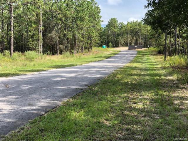 5828 W Cisco Street, Beverly Hills, FL 34465 (MLS #785345) :: Plantation Realty Inc.