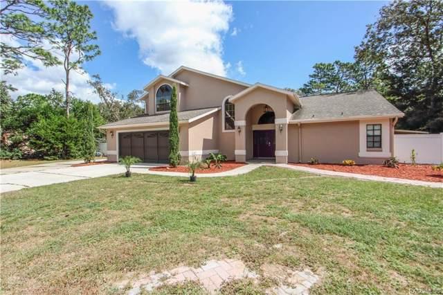 1339 N Carnevale Terrace, Lecanto, FL 34461 (MLS #785769) :: Plantation Realty Inc.