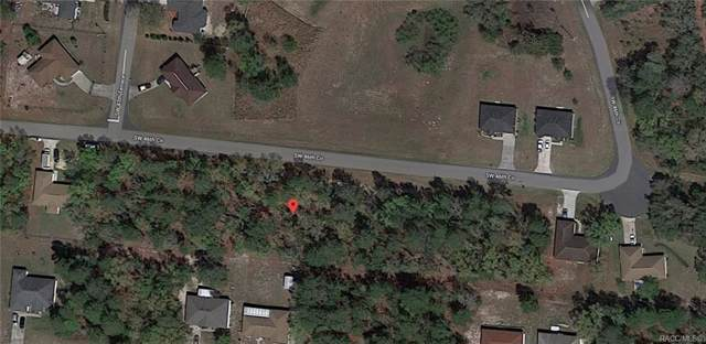 000 SW 46th Circle, Ocala, FL 34473 (MLS #785832) :: Pristine Properties