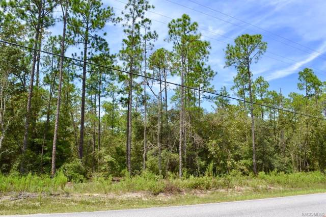 Dunnellon, FL 34431 :: Plantation Realty Inc.