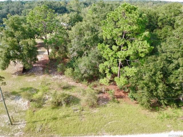 Citra, FL 32113 :: Pristine Properties