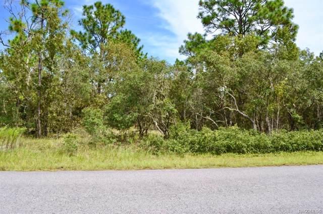 Dunnellon, FL 34431 :: Plantation Realty Inc.