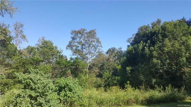 0 Parcel ID 0481700200, Other, FL 32696 (MLS #786052) :: Pristine Properties