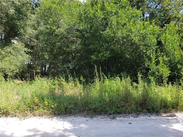 4387 SE 142nd Lane, Summerfield, FL 34491 (MLS #786063) :: Pristine Properties