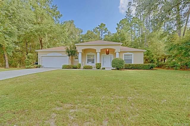 9273 N Rhine Way, Citrus Springs, FL 34434 (MLS #786075) :: Pristine Properties