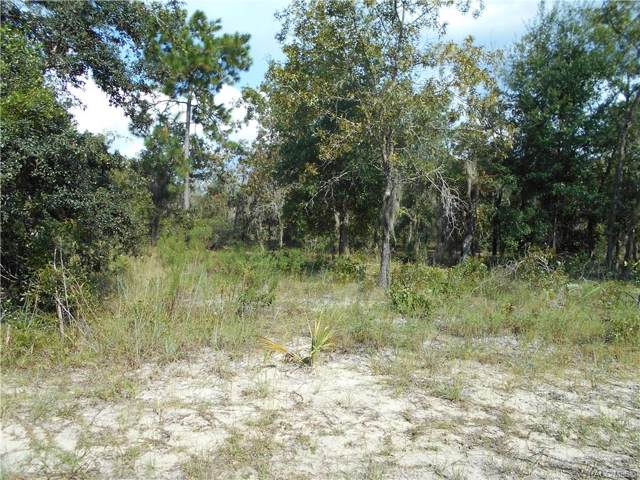 11787 N Belluzzi Terrace, Dunnellon, FL 34433 (MLS #786092) :: Plantation Realty Inc.