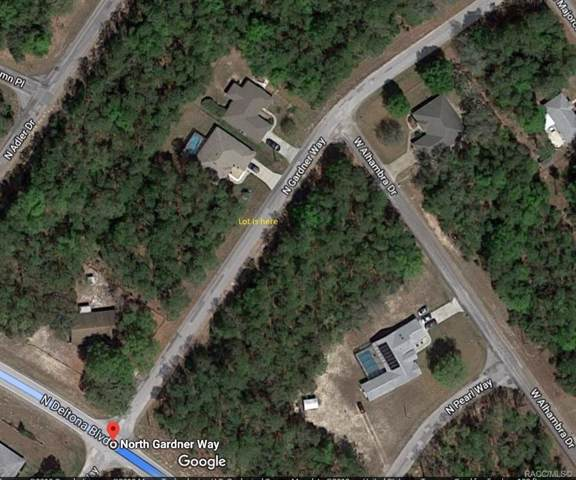 10246 N Gardner Way, Citrus Springs, FL 34434 (MLS #786098) :: Pristine Properties
