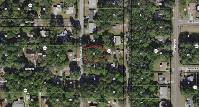 3677 S College Avenue, Inverness, FL 34453 (MLS #786140) :: 54 Realty