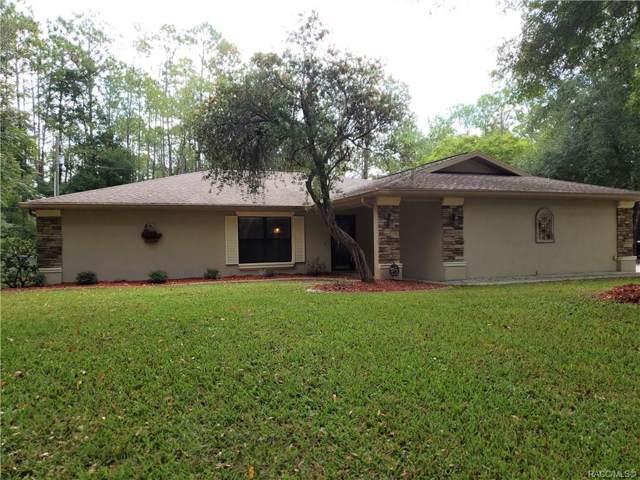 10031 N Biscayne Drive, Citrus Springs, FL 34434 (MLS #786178) :: Pristine Properties