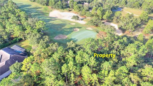 3901 N Grayhawk Loop, Lecanto, FL 34461 (MLS #786222) :: Plantation Realty Inc.