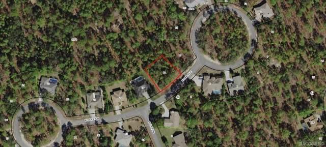 4 Elder Court E, Homosassa, FL 34446 (MLS #786247) :: Pristine Properties