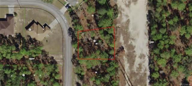 11 Mayten Circle, Homosassa, FL 34446 (MLS #786249) :: Pristine Properties