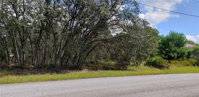 5 Balsam Street, Homosassa, FL 34446 (MLS #786256) :: Pristine Properties