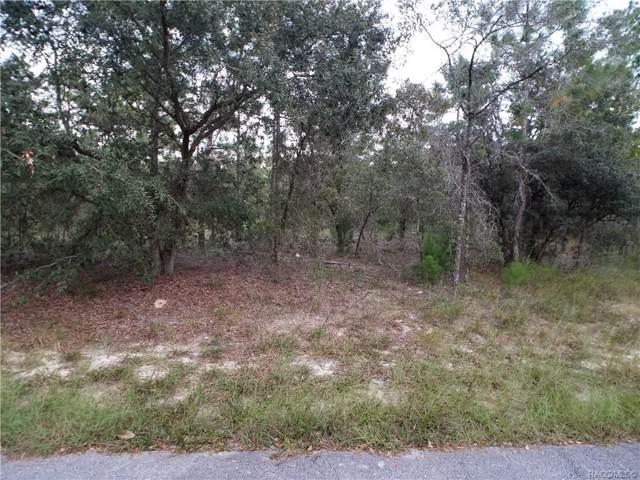 17 Carnation Court, Homosassa, FL 34446 (MLS #786283) :: Pristine Properties