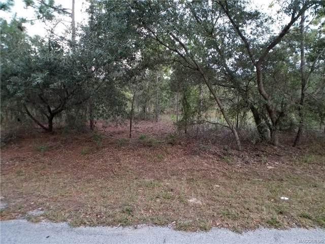 15 Carnation Court, Homosassa, FL 34446 (MLS #786291) :: Pristine Properties