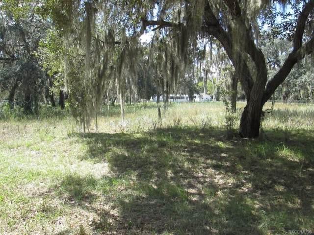 5272 N Western Drive, Hernando, FL 34442 (MLS #786340) :: Plantation Realty Inc.