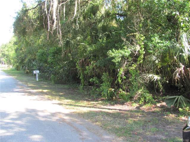 7126 W Crestview Lane, Crystal River, FL 34429 (MLS #786394) :: Plantation Realty Inc.