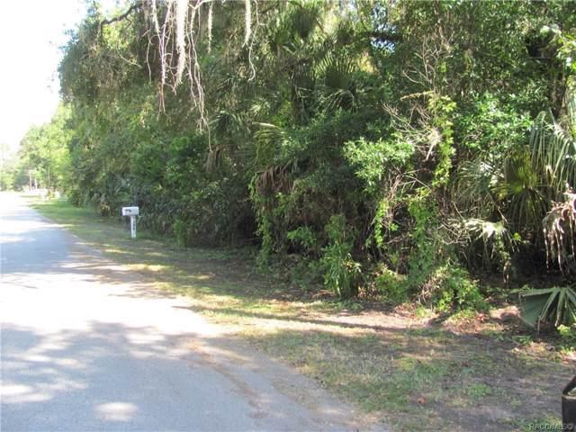 7132 W Crestview Lane, Crystal River, FL 34429 (MLS #786395) :: Plantation Realty Inc.