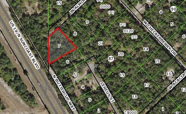 9335 N Buttercup Way, Crystal River, FL 34428 (MLS #786402) :: Plantation Realty Inc.