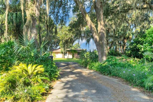 10125 W Riverwood Drive, Crystal River, FL 34428 (MLS #786477) :: Plantation Realty Inc.