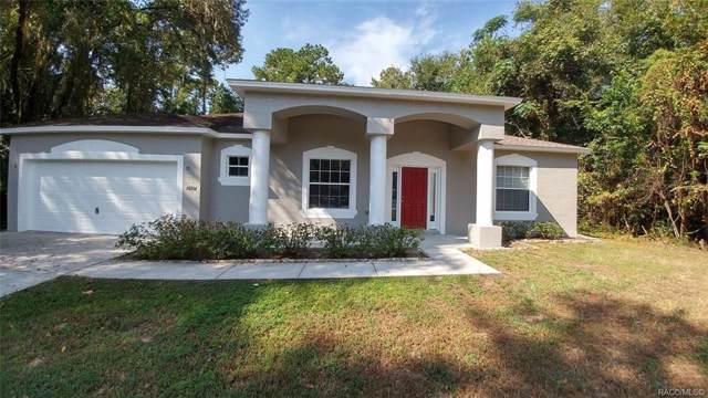 10714 N Athenia Drive, Citrus Springs, FL 34434 (MLS #786478) :: Plantation Realty Inc.