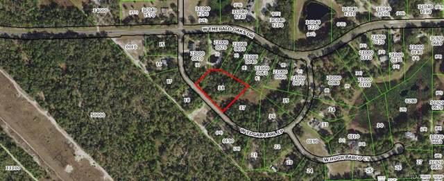 9595 W Edgar Earl Loop, Crystal River, FL 34428 (MLS #786484) :: Plantation Realty Inc.