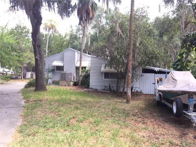 6873 S Pinebranch Point, Homosassa, FL 34448 (MLS #786524) :: Plantation Realty Inc.