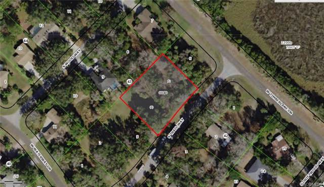 4836 S Trail Way, Homosassa, FL 34448 (MLS #786545) :: Plantation Realty Inc.