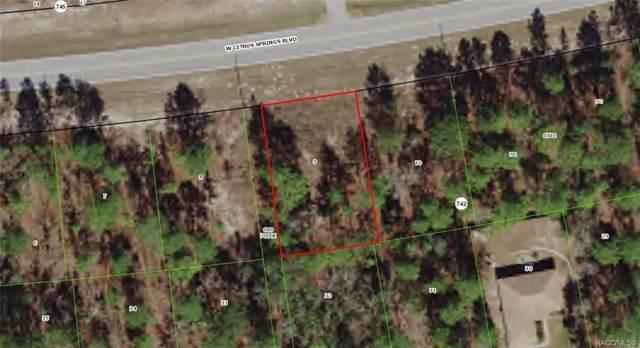 2144 W Citrus Springs Boulevard, Citrus Springs, FL 34434 (MLS #786575) :: Plantation Realty Inc.