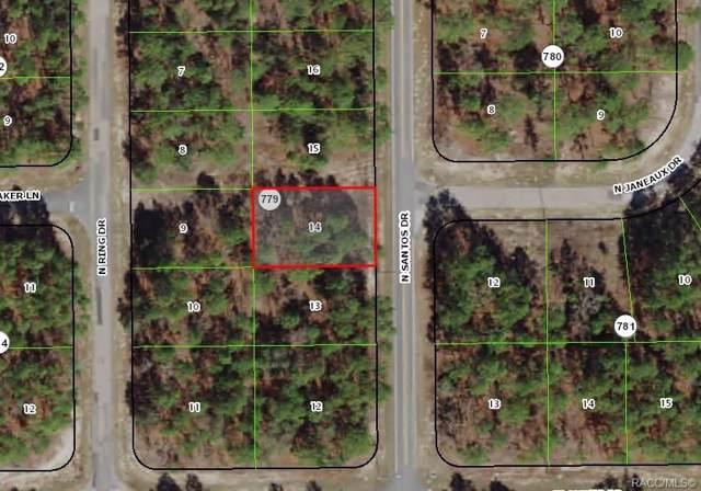 7809 N Santos Drive, Citrus Springs, FL 34434 (MLS #786583) :: Plantation Realty Inc.