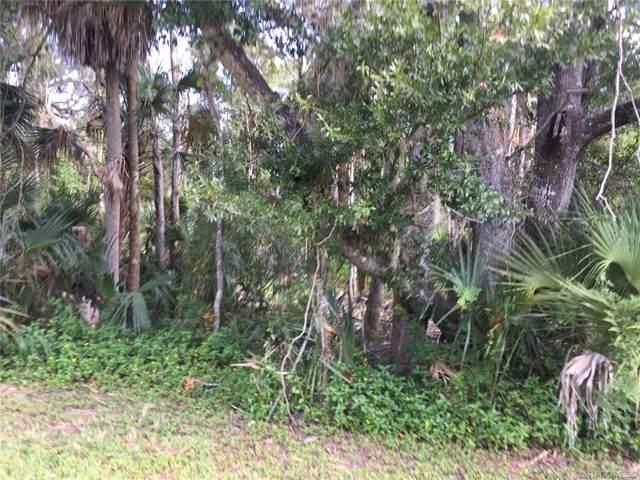 11735 W Fisherman Lane, Homosassa, FL 34448 (MLS #786595) :: Plantation Realty Inc.