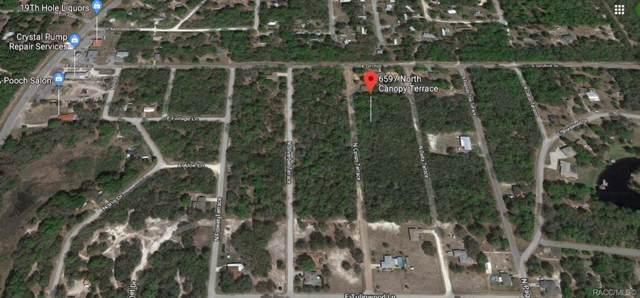 6597 N Canopy Terrace, Hernando, FL 34442 (MLS #786604) :: 54 Realty
