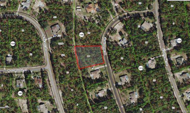 5230 N Cimarron Drive, Beverly Hills, FL 34465 (MLS #786623) :: Plantation Realty Inc.