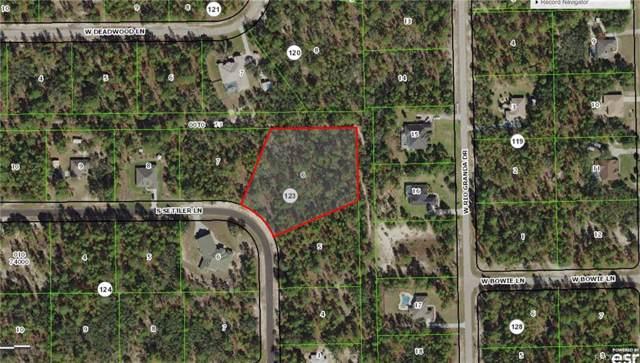 6263 W Settler Drive, Beverly Hills, FL 34465 (MLS #786633) :: Plantation Realty Inc.