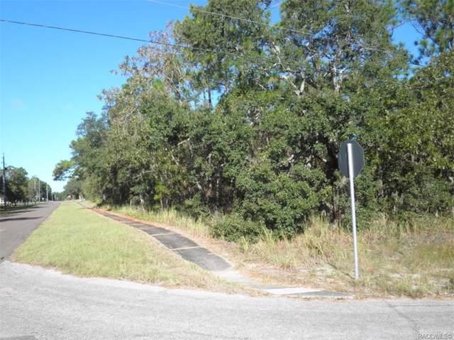 4622 N Ficus Drive, Beverly Hills, FL 34465 (MLS #786663) :: Plantation Realty Inc.