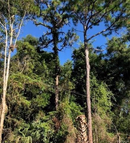 226 S Camellia Avenue, Crystal River, FL 34429 (MLS #786673) :: Plantation Realty Inc.