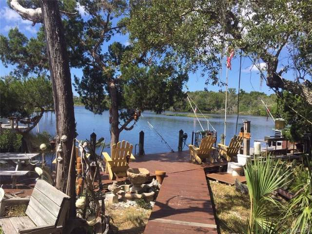 5820 S Hellgate Island, Homosassa, FL 34448 (MLS #786689) :: Pristine Properties