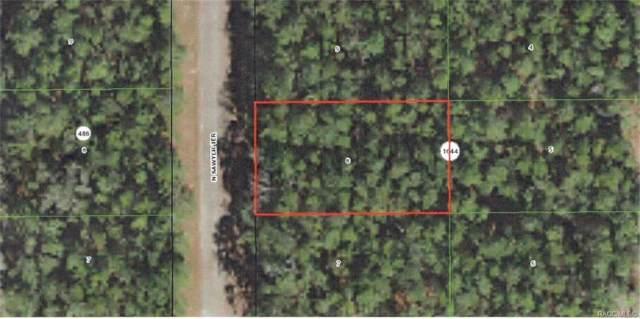 8899 N Sawyer Terrace, Citrus Springs, FL 34434 (MLS #786790) :: Plantation Realty Inc.